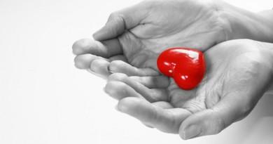 cuore348081