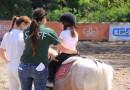 Scuola Napoletana di Equitazione, aottobre inizia il Trofeo Natalizio