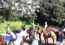 Cavalli che passione, auguri a… quattro zampe!