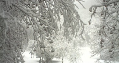 neve-abbondante-a-laceno-1100-metri-avellinese