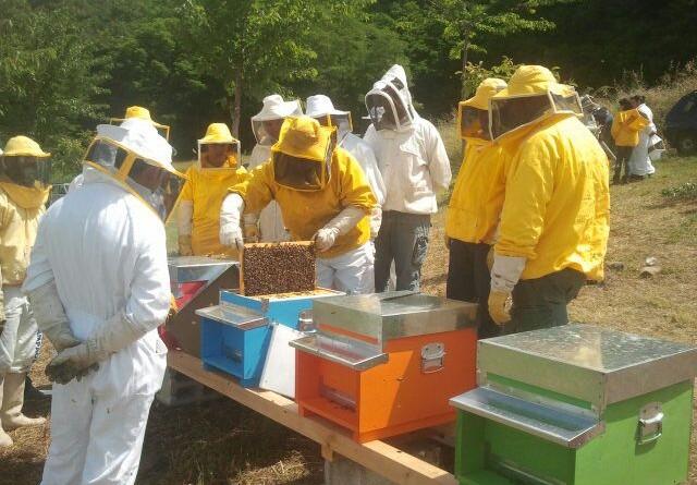 Gruppo APAM a Riccia in apiario 2016 (1)