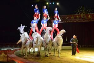 Le piramidi equestri della Troupe Alex
