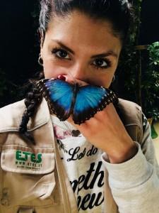 butterflyhouse zoo di napoli