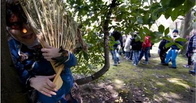 L'albero del sole - I Teatrini regia Giovanna Facciolo