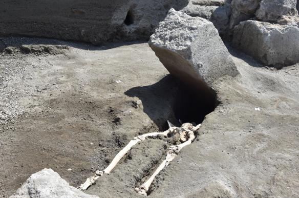 pompei scheletro
