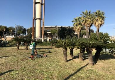 Cittadini in azione, a piazzale Tecchio 60 volontari in campo per la cura del verde