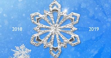 Fiocco di neve Coccopalmeri, emozioni da collezionare