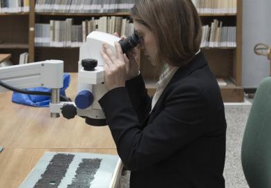 Ercolano, edizione digitale per la storia dei Papiri