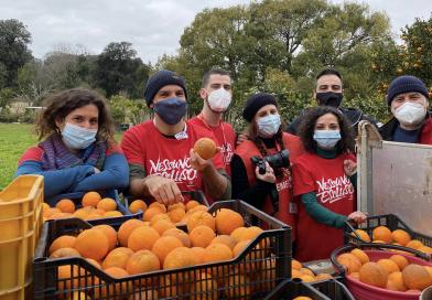 Arance e mandarini per le famiglie in difficoltà