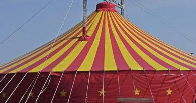 Salviamo il circo e gli spettacoli itineranti