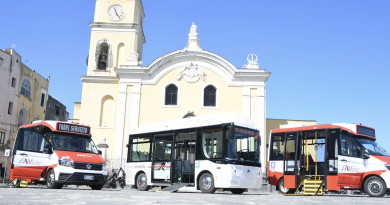 Procida bus